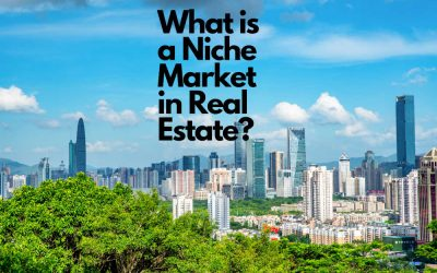 What is a Niche Market in Real Estate?