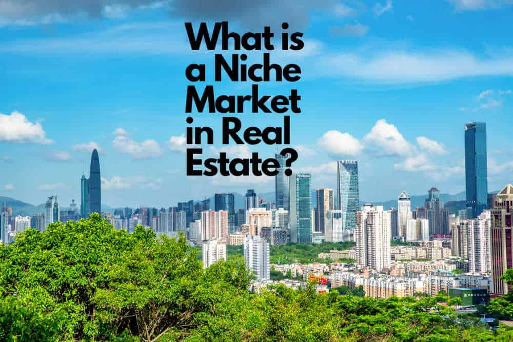 What is a Niche Market in Real Estate