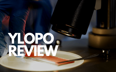 The Ylopo Review With Key Marketing Performance Indicators